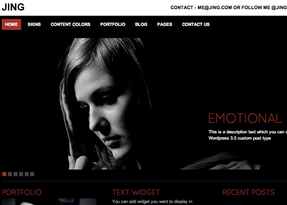 Wordpress Photo gallery Themes