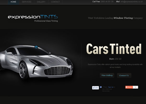 expression-tints 30+ Business Web design Inspiration
