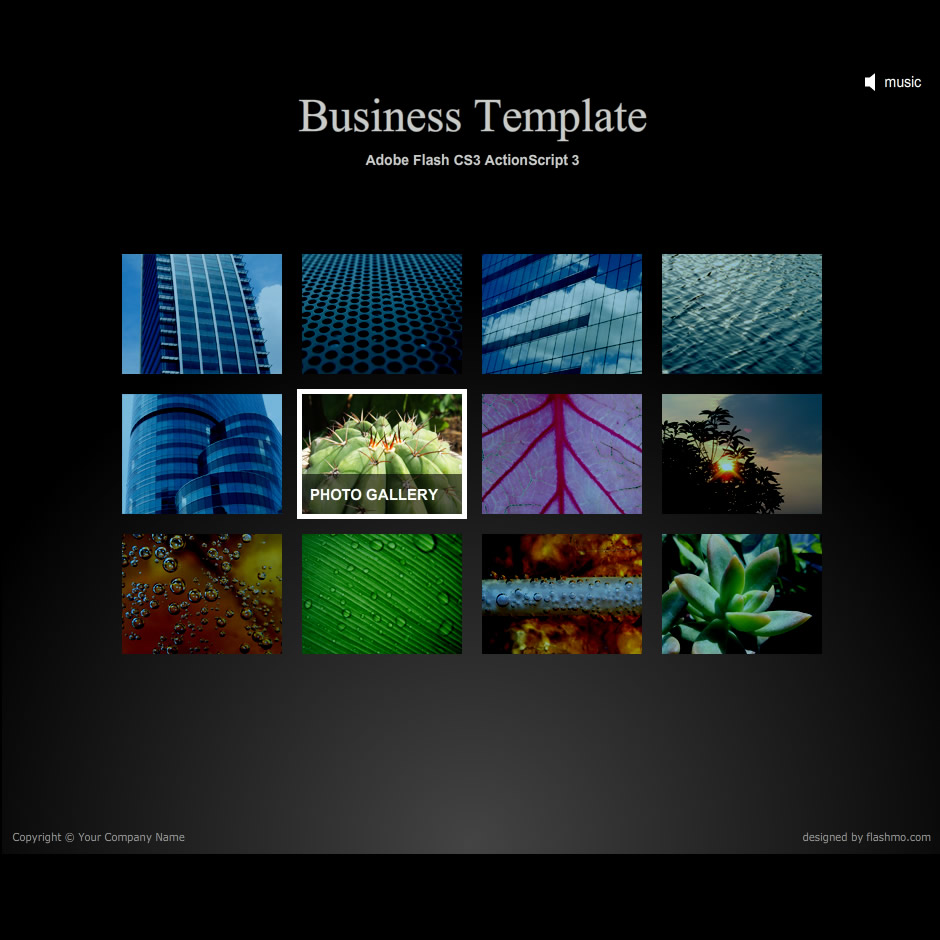 free-flash-template13 30+ Free Flash Templates