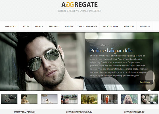 Aggregate 60 Free And Premium Quality WordPress Themes