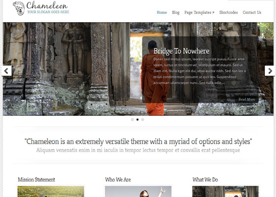 Chameleon 60 Free And Premium Quality WordPress Themes