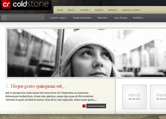 ColdStone-WordPress-Theme 60 Free And Premium Quality WordPress Themes