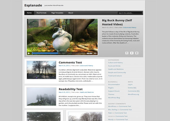 Esplanade 60 Free And Premium Quality WordPress Themes