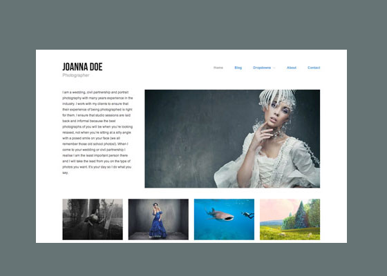 Hatch 60 Free And Premium Quality WordPress Themes