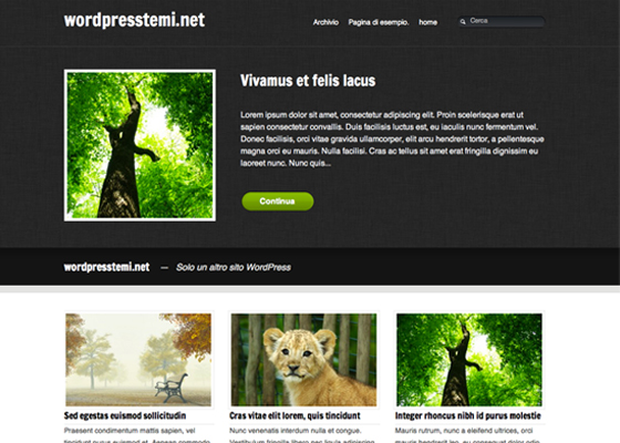 Beautiful Free WordPress Themes