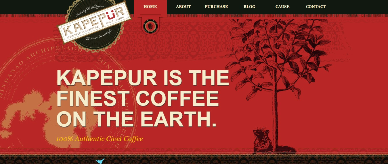 Kapepur Website