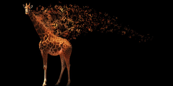Musical-Giraffe 20+ Latest Photo Manipulation Tutorials