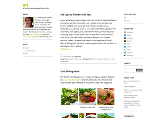 Ari-WordPress-Theme 25 Free Minimal Responsive WordPress Themes