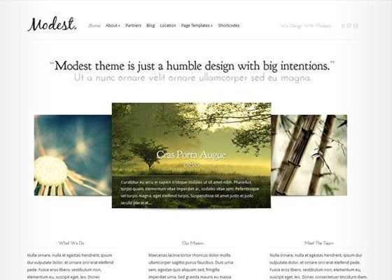 Modest 25 Free Minimal Responsive WordPress Themes
