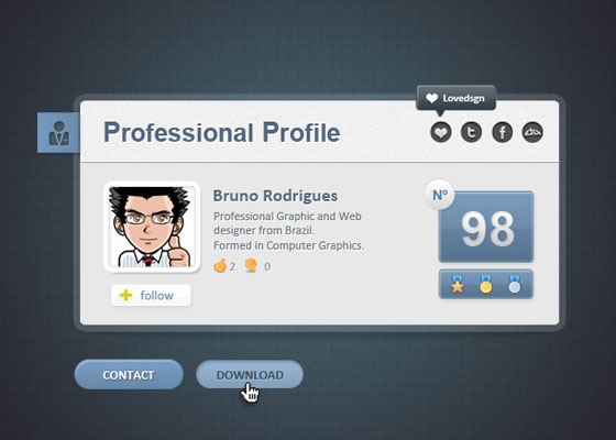 Professional Web Card