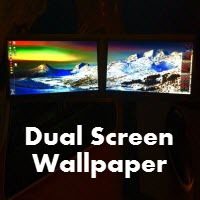 dual screen monitor