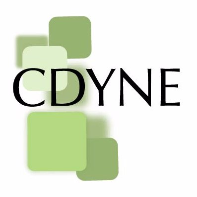 cdyne demographics