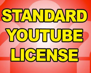 what does standard youtube license mean