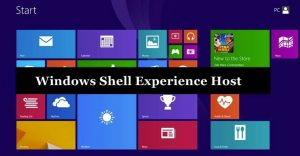 windows shell experience host high memory