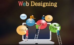 questions to ask a website designer