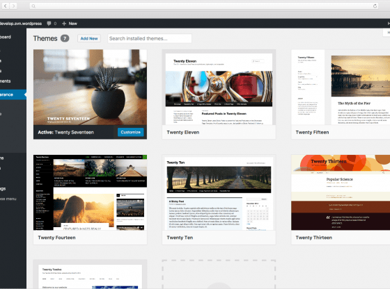 wordpress website with themes